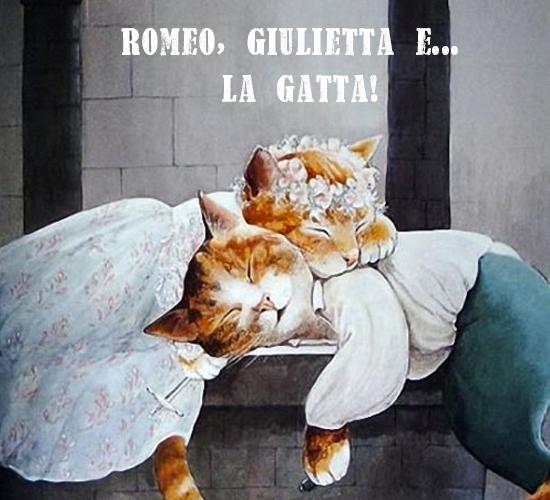 ROMEO,GIULIETTA E.. IL GATTO!